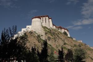 Lhasa_5893