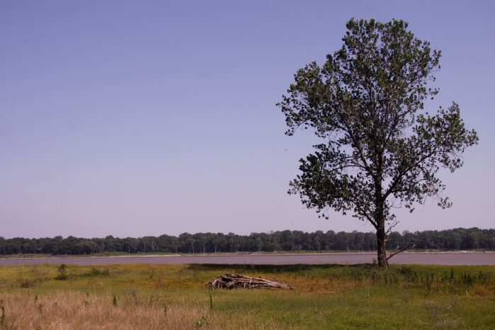 clarksdale to choctaw island mississippi_5221