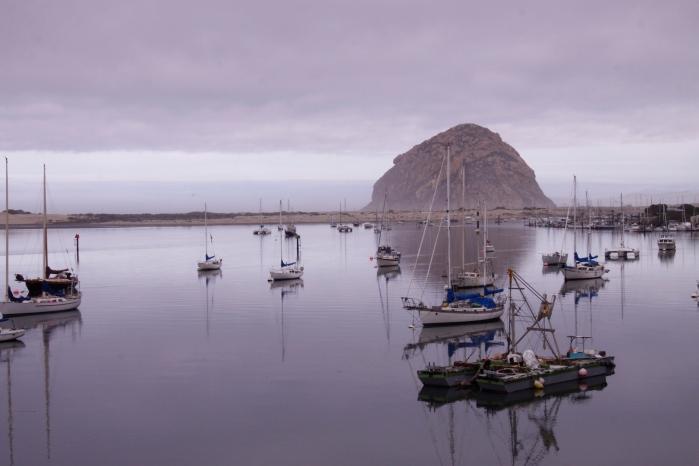Morro Bay 3-12_3711