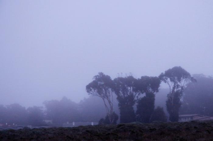 Morro Bay 3-12_blue