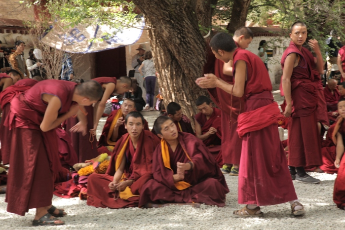 Sera Monastery _5992