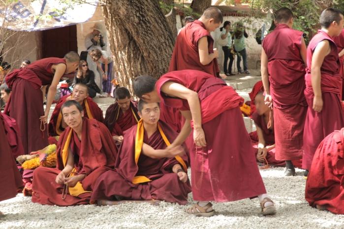 Sera Monastery _5993